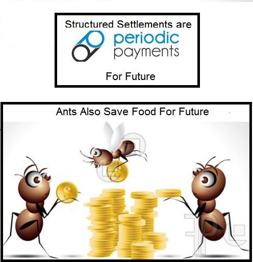 settlements vs ants