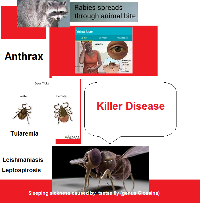 killer disease